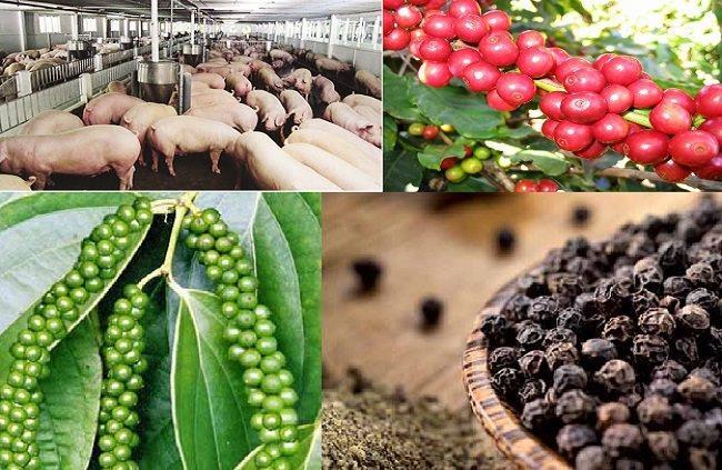 Giá nông sản, thực phẩm hôm nay (11/4): Giá lợn tăng 5.000 đồng/kg