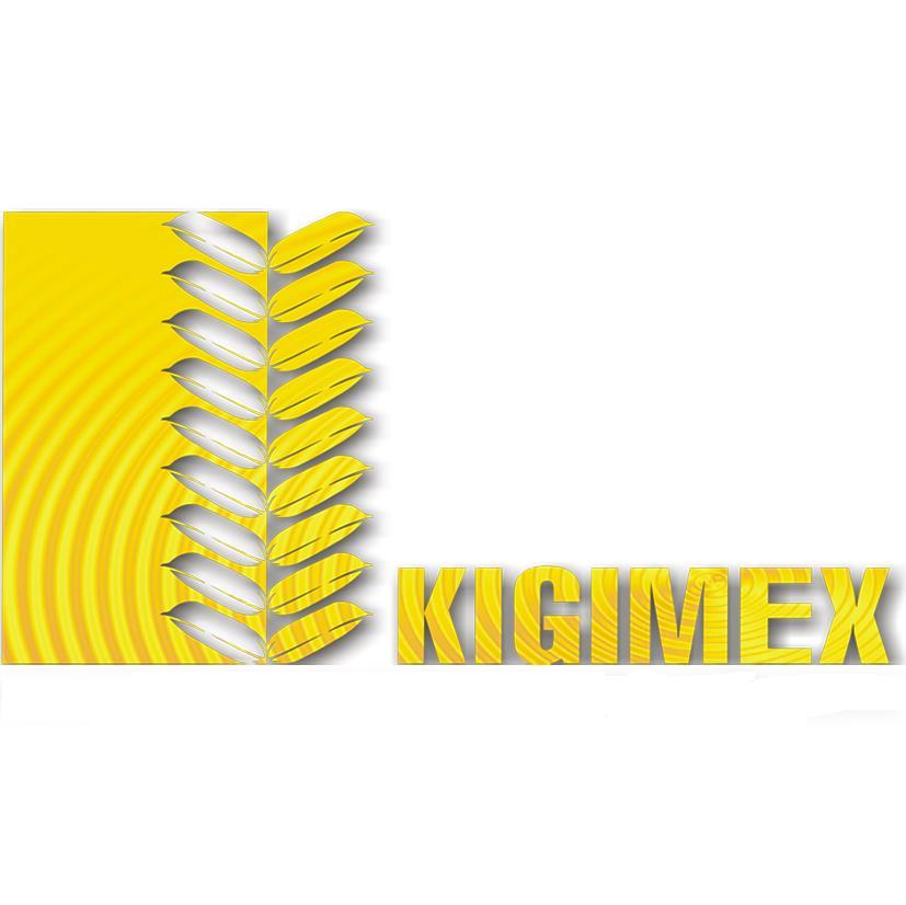 KGM: Báo cáo tài chính quý 1/2018