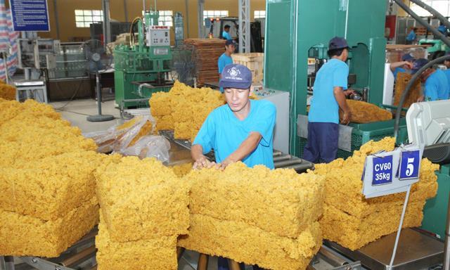 Xuất khẩu cao su chịu nhiều áp lực từ CPTPP