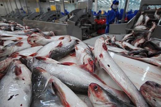 Sau khi áp mức kỷ lục, Mỹ giảm mạnh thuế với cá tra, basa Việt Nam