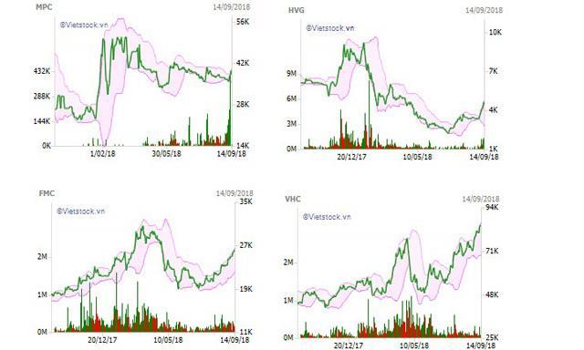 """Cổ phiếu thủy sản có duy trì được """"sóng""""?"""