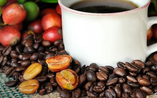Giá cà phê vượt mốc 37 triệu đồng/tấn