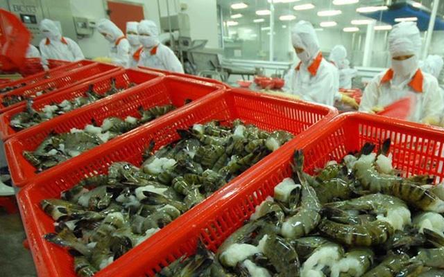 Dự báo xuất khẩu tôm sang EU tăng trở lại vào cuối năm