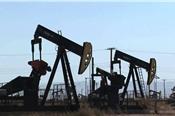 OPEC chưa ra quyết định giảm sản lượng, giá dầu mất gần 3%