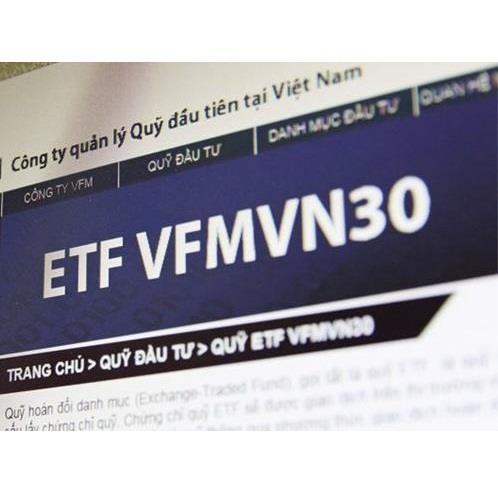 E1VFVN30: Thông báo giao dịch chứng chỉ quỹ của tổ chức có liên quan đến NNB VFM