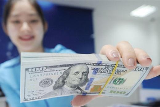 Tháng 1 mua 4 tỷ USD dự trữ ngoại hối: Một mũi tên trúng nhiều đích