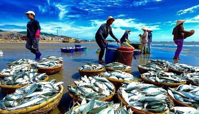 VASEP: Doanh nghiệp thuỷ sản kêu khó vì thiếu quy định về dư lượng với hoá chất, kháng sinh cấm