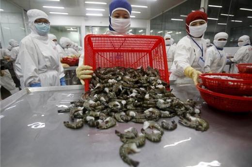 Giải quyết được các vấn đề sau, thuỷ sản Việt Nam có thể thâm nhập mọi thị trường