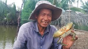 Cua biển xuất sang Trung Quốc 46.000 đồng một kg?