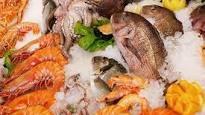 Xuất khẩu tôm, cá tra, mực, bạch tuộc giảm