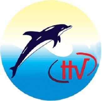 HVG: Nghị quyết HĐQT về việc chọn công ty kiểm toán độc lập